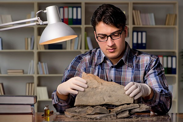 An archaeologist works with a find